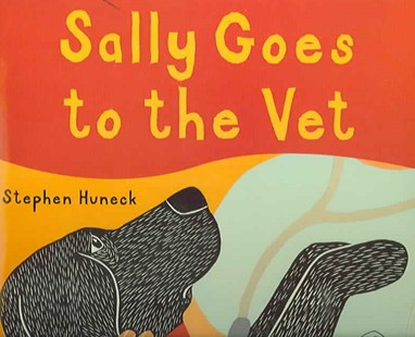 Sally Goes to the Vet by Stephen Huneck, Stephen Huneck (9780810948136) - HardCover - Children's Fiction Intermediate (5-7)