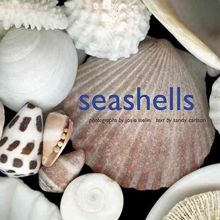 Seashells by Josie Iselin, Sandy Carlson (9780810993273) - HardCover - Art & Architecture Photography - Pictorial