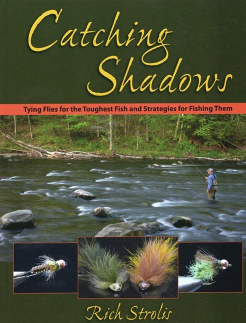 (ebook) Catching Shadows