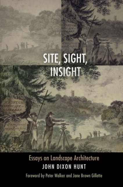 Site, Sight, Insight