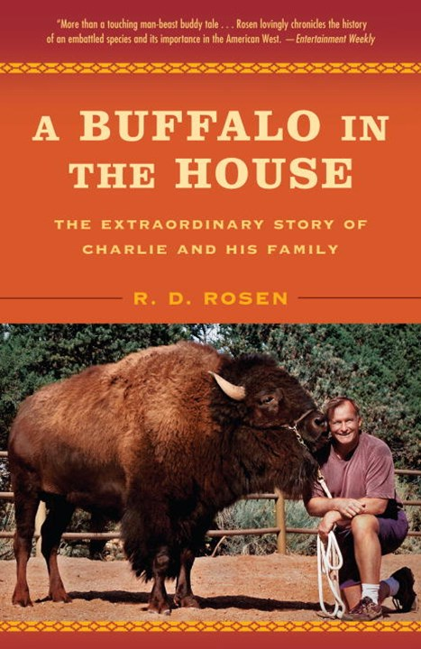 A Buffalo in the House