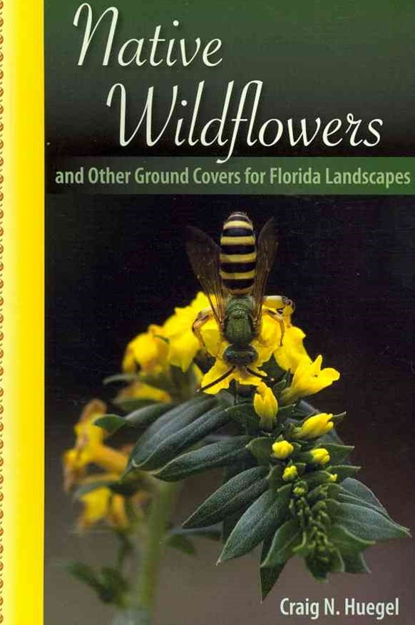 Native Wildflowers and Other Ground Covers for Florida Landscapes