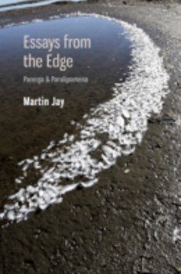 Essays from the Edge