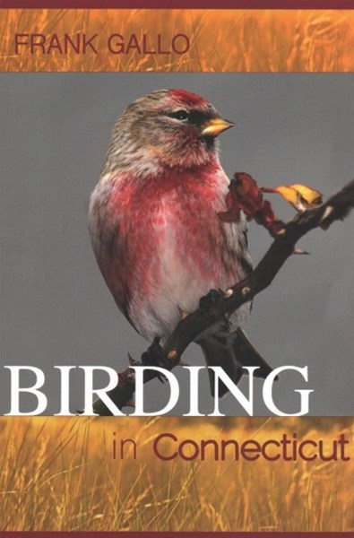 Birding in Connecticut