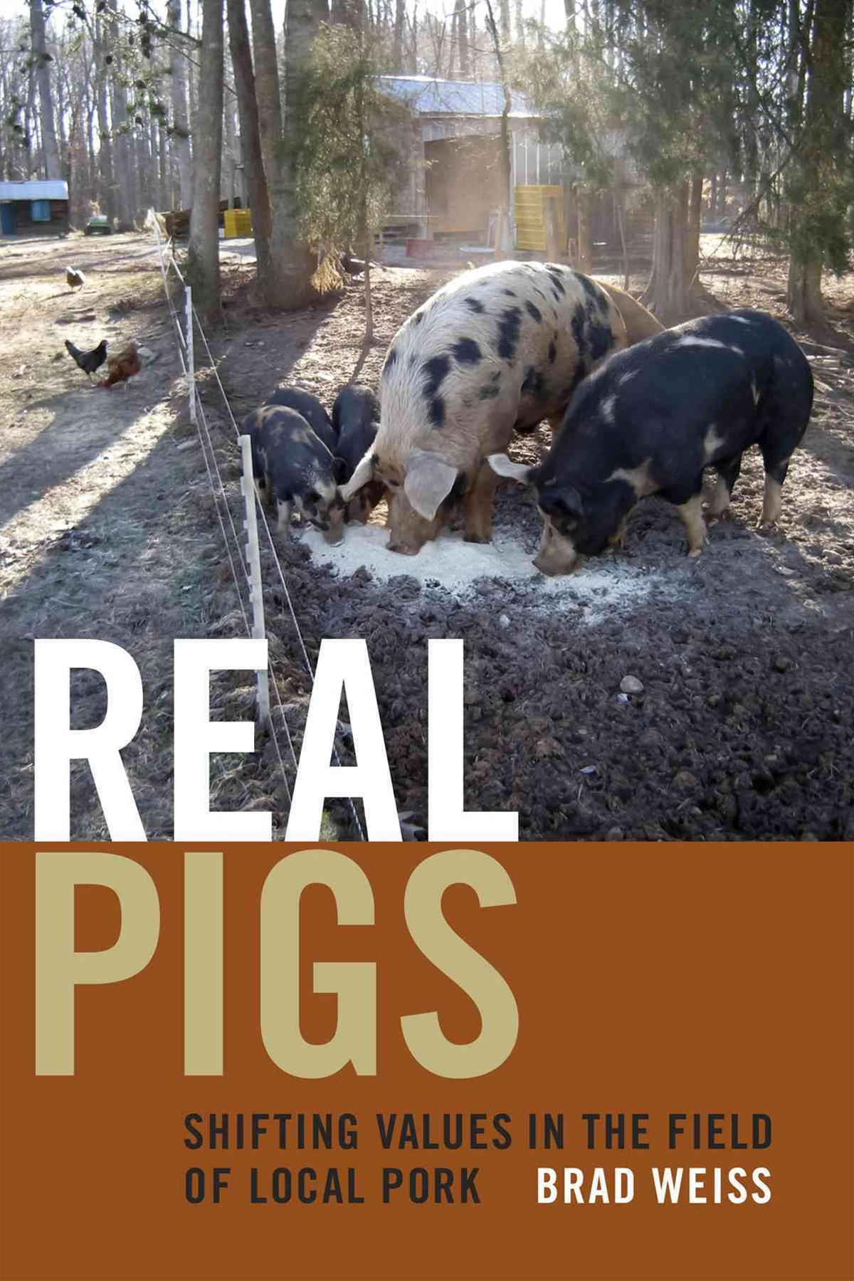 Real Pigs