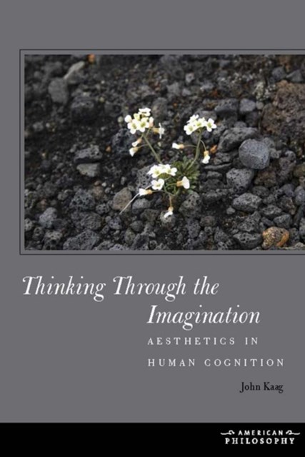 Thinking Through the Imagination