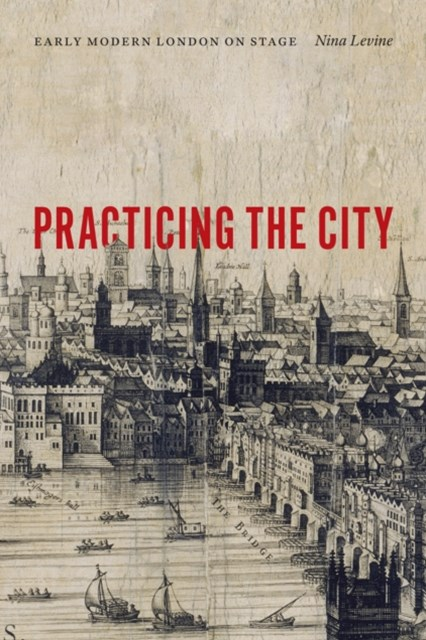 (ebook) Practicing the City