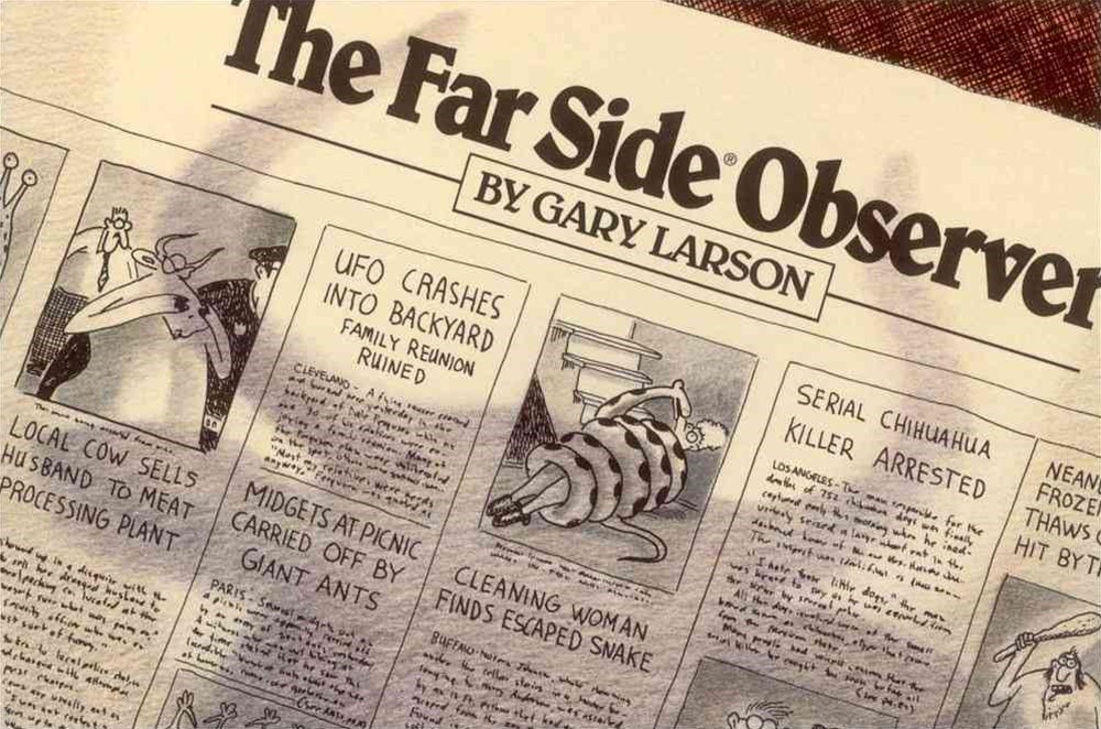The Far Side-« Observer