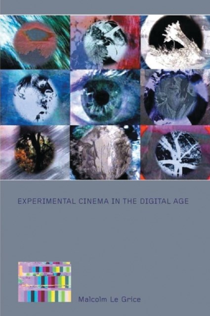 Experimental Cinema in the Digital Age