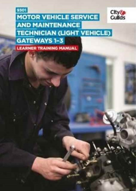 9301 Motor Vehicle Service and Maintenance Technician (Light Vehicle) on-Programme Tasks: Training Manual