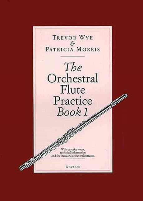 Orchestral Flute Practice