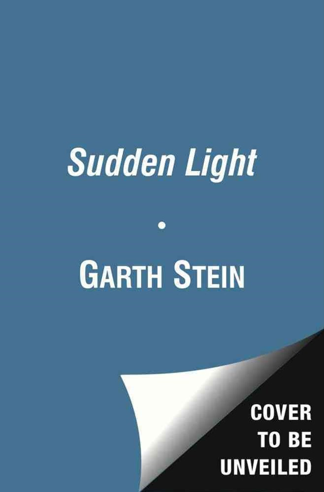 A Sudden Light