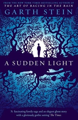 (ebook) A Sudden Light