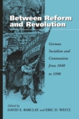 Between Reform and Revolution