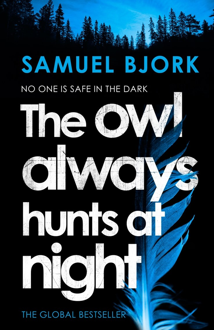 The Owl Always Hunts at Night: (Munch and Kruger Book 2)