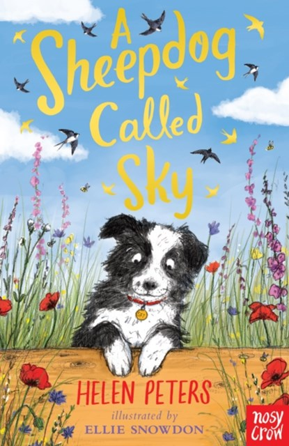 Sheepdog Called Sky