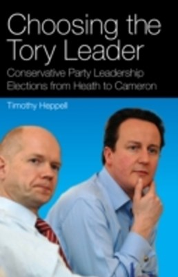Choosing the Tory Leader