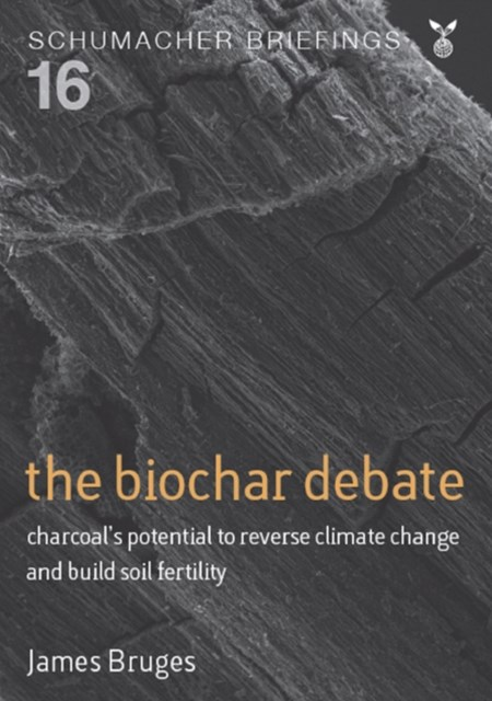 (ebook) Biochar Debate