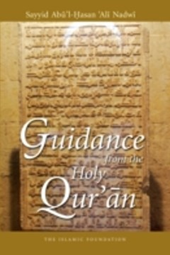 Guidance from the Holy Qur