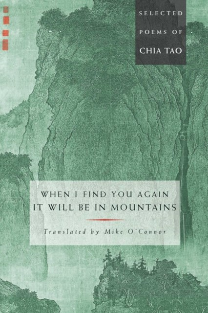When I Find You Again, It Will Be in Mountains
