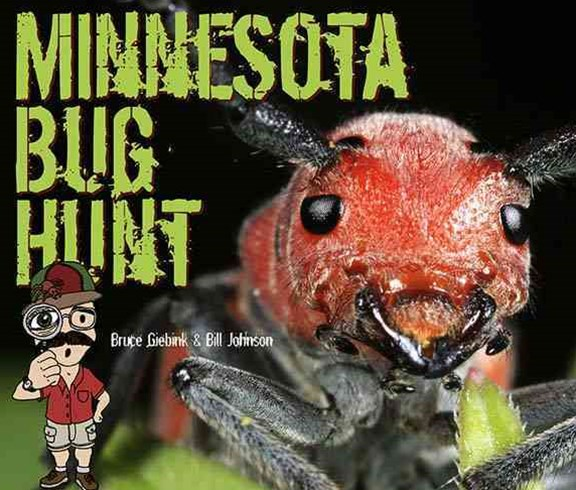 Minnesota Bug Hunt