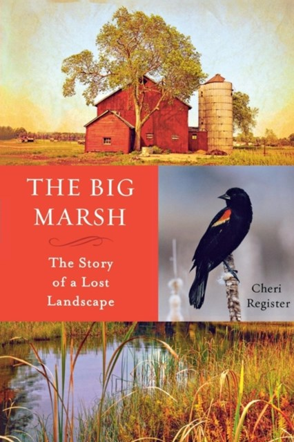 (ebook) Big Marsh