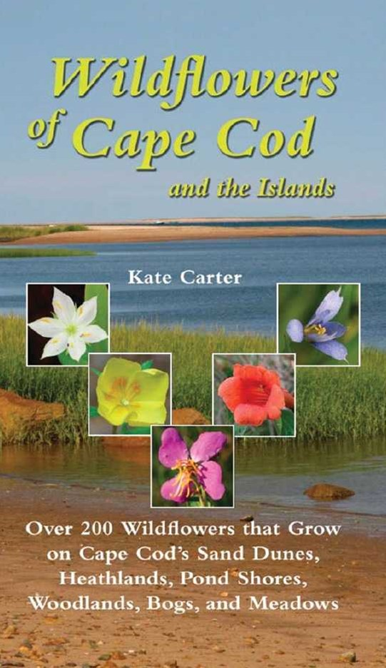 Wildflowers of Cape Cod & the Islands