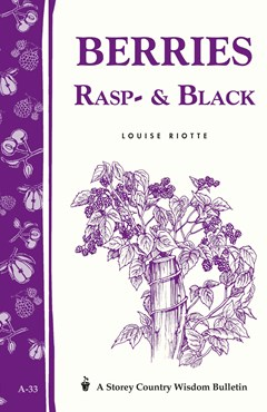 Berries, Rasp- and Black: Storey