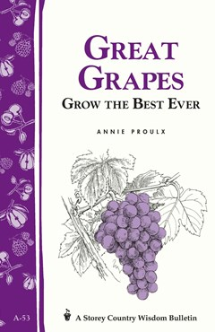 Great Grapes: Storey
