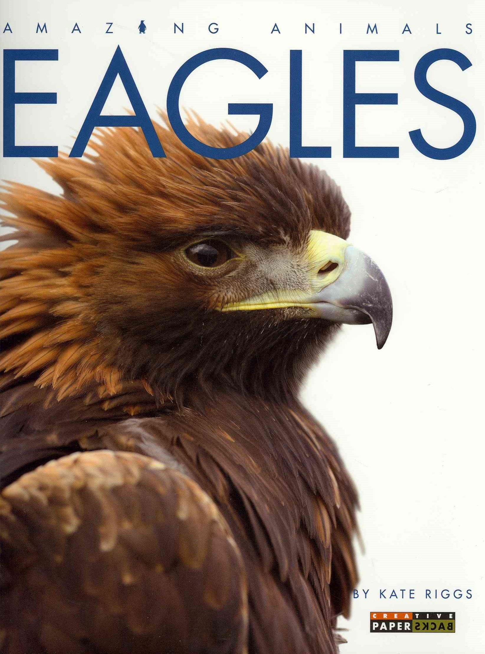 Amazing Animals: Eagles