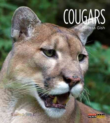 Living Wild: Cougars