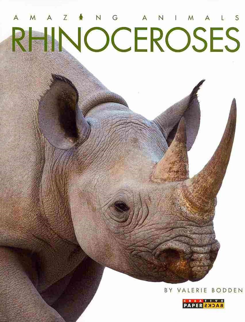 Amazing Animals: Rhinoceroses