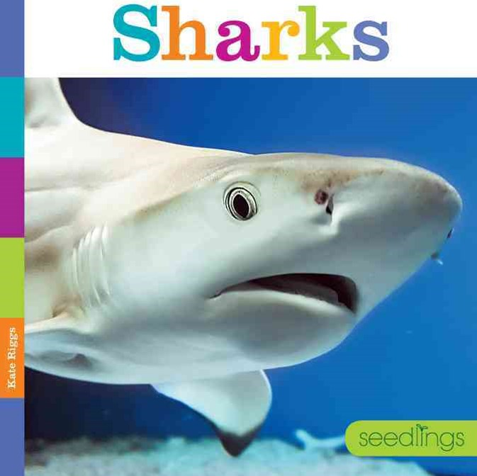 Seedlings: Sharks
