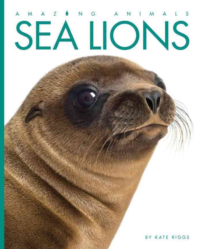 Amazing Animals: Sea Lions