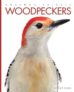 Amazing Animals: Woodpeckers