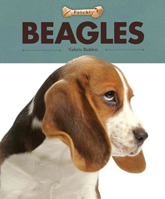 Fetch!: Beagles
