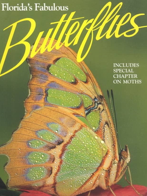 Florida's Fabulous Butterflies and Moths