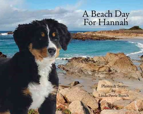 A Beach Day for Hannah