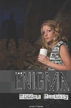 The Enigma Diaries