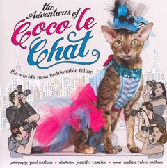 Adventures of Coco Le Chat: The World