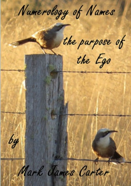 (ebook) Numerology of Names: the Purpose of the Ego