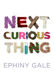 (ebook) Next Curious Thing - Modern & Contemporary Fiction General Fiction