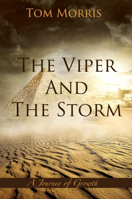 (ebook) Viper and the Storm