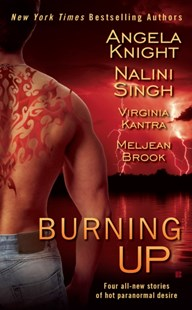 (ebook) Burning Up - Horror & Paranormal Fiction