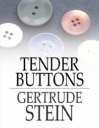 dymocks how to write by stein gertrude. Black Bedroom Furniture Sets. Home Design Ideas