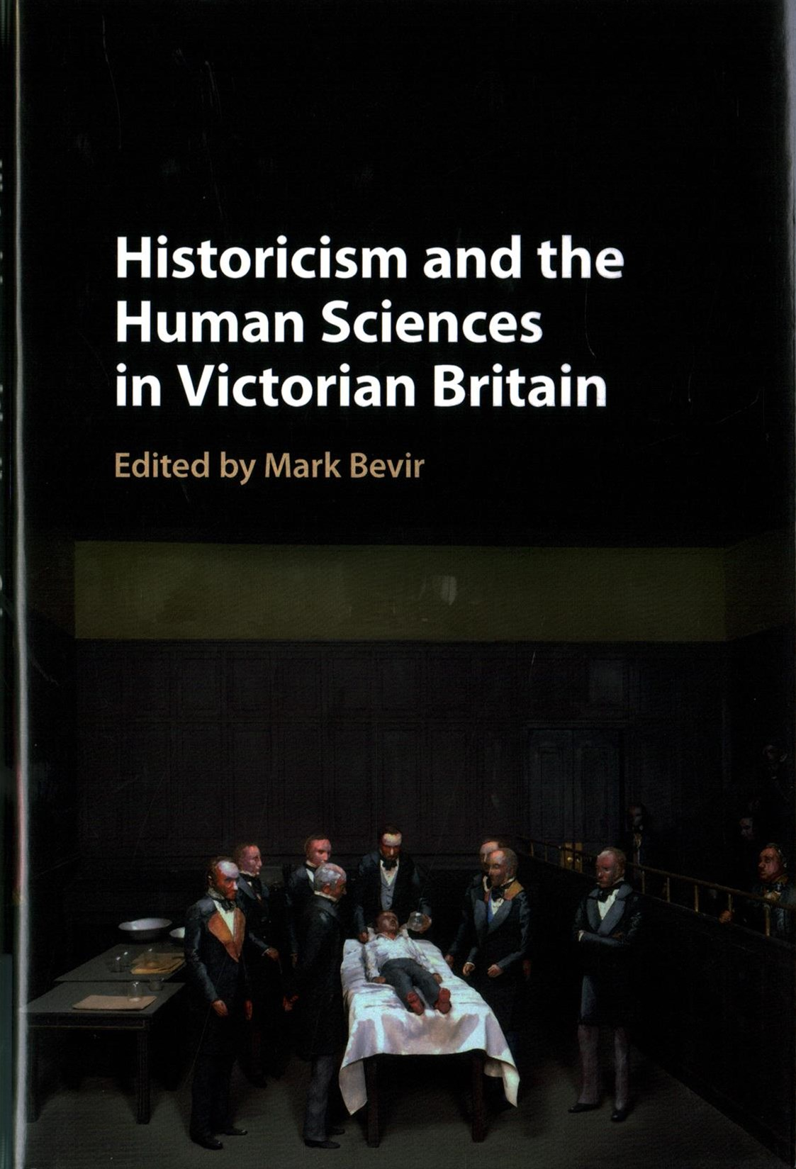 Historicism and the Human Sciences in Victorian Britain