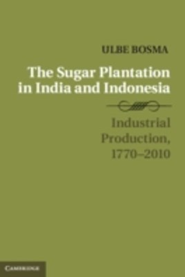 Sugar Plantation in India and Indonesia