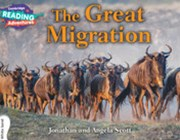 The Great Migration White Band