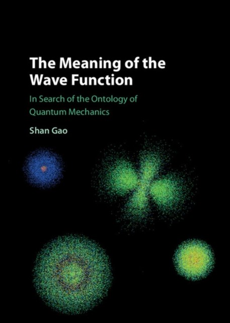 (ebook) Meaning of the Wave Function