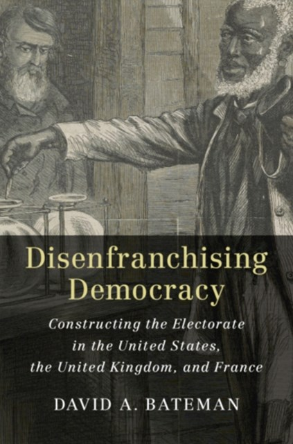 Disenfranchising Democracy